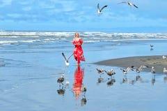 Птицы женщины и чайок на пляже морем стоковые фотографии rf