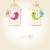 птицы милые Стоковое Изображение RF
