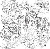 Птицы нарисованные для книжка-раскраски Стоковое фото RF
