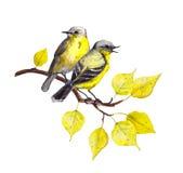 Птицы на ветви с листьями осени акварель Стоковое Фото