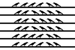 Птицы на проводе Стоковые Изображения RF