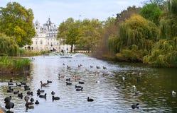 Птицы на пруде с фонтаном, парком St James Стоковое Изображение