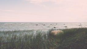 Птицы на утесах в влиянии года сбора винограда моря Стоковые Фото