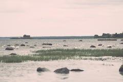 Птицы на утесах в влиянии года сбора винограда моря Стоковое фото RF