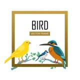 Птицы обрамляют плоскую иллюстрацию вектора дизайна иллюстрация вектора