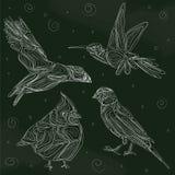 Птицы доски Стоковое Изображение