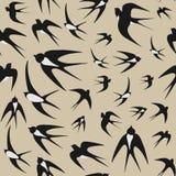 птицы предпосылки flock над безшовной белизной вектора текстуры ласточек Стоковая Фотография