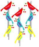 Птицы с вишнями в предпосылке клювов Стоковые Изображения RF