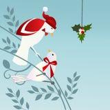 Птицы с Mistletoe Стоковая Фотография RF