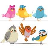 птицы цветастые Стоковые Фото