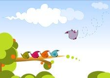 птицы Стоковое Изображение RF