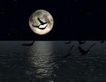 Птицы 2 Стоковые Изображения RF