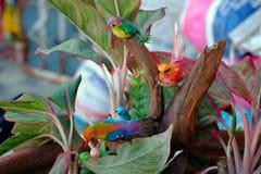 Птицы Стоковые Фото