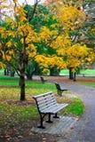 публика сада boston Стоковые Фото