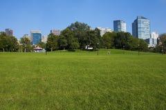 публика сада boston Стоковое Фото
