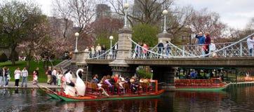 публика США сада boston общяя Стоковая Фотография RF