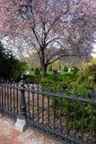 публика США сада boston общяя Стоковое Изображение