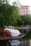 публика США сада boston общяя Стоковое фото RF