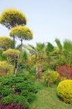 Публика Garden-1 Стоковое Изображение RF
