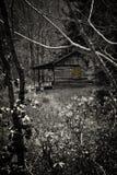 Пугающая бревенчатая хижина Стоковая Фотография