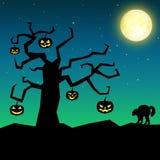 Пугающее дерево тыквы хеллоуина Стоковые Изображения RF