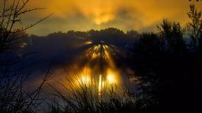 Пугающие лучи Солнца на хеллоуин стоковое изображение rf