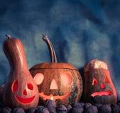 Пугающие тыквы хеллоуина Стоковые Изображения RF
