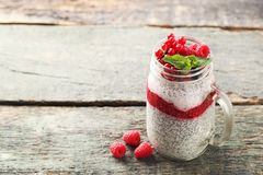 Пудинг Chia с ягодами Стоковые Изображения RF