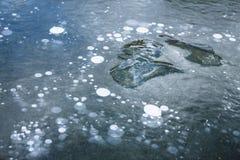 Пузыри льда и абстрактное образование льда Стоковое Изображение
