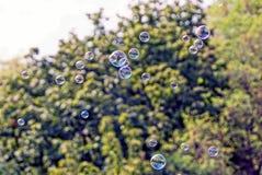 Пузыри мыла цвета летают в воздух на фоне зеленых деревьев Стоковые Изображения