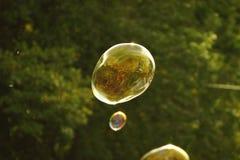 Пузыри мыла летания Стоковое Изображение RF