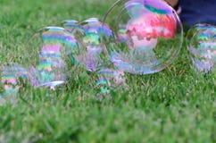 Пузыри мыла на траве стоковое изображение rf