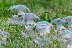Пузыри мыла на траве стоковые фото