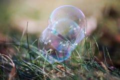 Пузыри на траве Стоковая Фотография