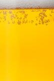 пузыри пива закрывают стеклянную съемку вверх Стоковая Фотография