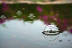 Пузыри причиненные путем идти дождь вниз Стоковые Изображения