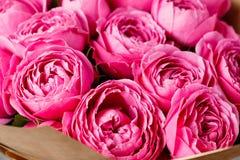 Пузыри розового пиона туманные Цветки букета розовых роз в стеклянной вазе на темной серой деревенской деревянной предпосылке шик Стоковые Фото