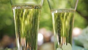 Пузыри шампанского в wedding стеклах сток-видео