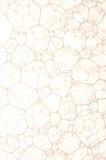 пузыри Стоковая Фотография RF