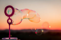 Пузыри Стоковое Изображение