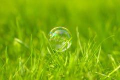 Пузырь мыла на траве Стоковое Изображение RF