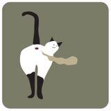 Пукает кот стоковое изображение rf