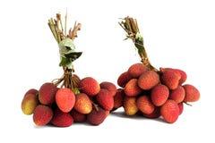 2 пука свежих lychees изолированных на белизне Стоковые Фотографии RF