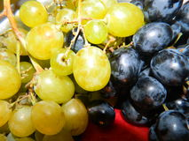 Пуки желтых и голубых виноградин, больших ягод Стоковые Фото