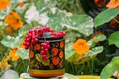 Пуки зрелой красной смородины в декоративном деревянном баке, покрашенные в стиле Khokhloma Стоковые Фотографии RF