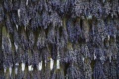 Пуки лаванды, пуки вися и суша травы Травяная предпосылка, текстура стоковая фотография rf