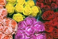 Пуки multiclored роз цветок предпосылки свежий Обслуживание флориста Оптовый цветочный магазин Хранение цветка Взгляд сверху Стоковое Фото