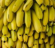 Пук бананов Стоковая Фотография