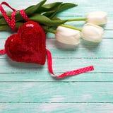 Пук белых цветков тюльпанов и декоративного красного сердца на turquo Стоковое Фото