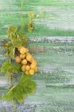 Пук больших зеленых желтых виноградин на старой grren треснутая покрашенная деревянная предпосылка Стоковое Изображение RF